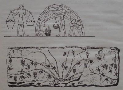 Форми на резитба в древността: