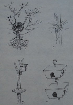 Гнезда и хранилки за птици