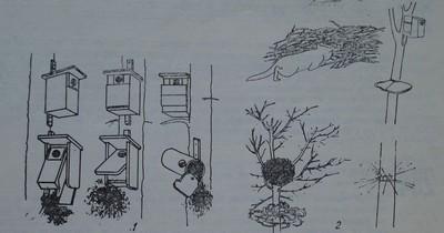 Изкуствени гнезда за птици