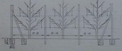 Конструкция от бетонни колове, бетонни подпори и поцинкован тел