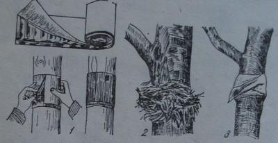 Ловни пояси от велпапе