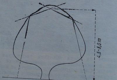 Механизирана резитба от едната страна и отгоре на палметен ред
