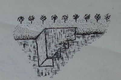 Почвен профил за проучване на почвата