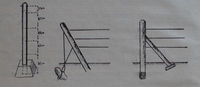 Подпирано на лозите на телена конструкция