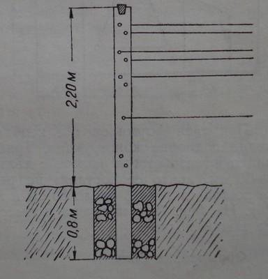 Начини на поставяне на коловете на телена конструкция при високите формировки