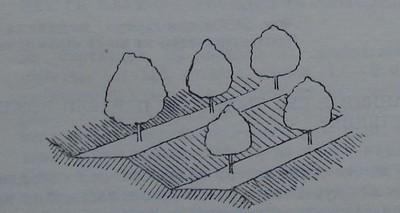 Тераси с широки платна