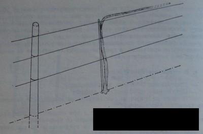 Триредова телена конструкция за насаждение от актинидия