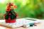 Как да се справим с разходите покрай празниците?