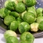 Брюкселско зеле – или витамини от аптеката?