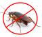 Опасни вредители ли са хлебарките?