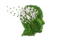 Ето кои витамини могат да ви предпазят от Алцхаймер!
