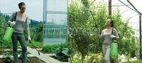 Как да изберем най-подходящата градинска пръскачка