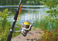 Как да изберете правилната риболовна макара