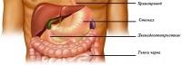 Как да разберете, че имате пептична язва?