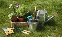 Как да се улесните при поддържането на градината
