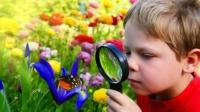 Как се развива човешкото зрение от раждането до училищна възраст?