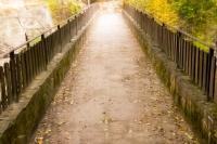 КЛИЕНТЪТ, доверието и интеракцията в психотерапията