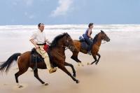 Колко важна е за нас свободата по време на езда