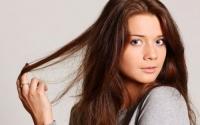 Косата съхранява информация за преживения стрес