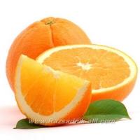 Отглеждане на Лимон, Портокал, Грейпфут, Мандарина (Цитруси) - Разсадник Елит