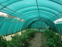 Ползите от използване на мрежи в земеделието