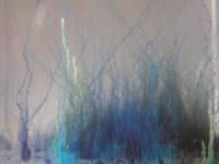 Сините водорасли лекуват махмурлука!