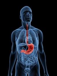 Видове язви – симптоми и причини за тяхната поява