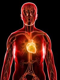 Високо кръвно налягане – признаци и симптоми